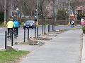 Zdesenie Bratislavčanov na FOTO: Zisťovali sme, kam zmizlo 45 stromov spred úradu vlády