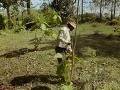 Muž každý deň na rovnakom mieste vysádzal stromy: O 37 rokov neskôr vám jeho dielo vyrazí dych