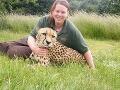 VIDEO Obrovská tragédia v ZOO: Tiger zabil opatrovateľku pred zhrozenými návštevníkmi