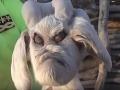 Táto tvár by vydesila každého: VIDEO zvieraťa, ktoré je pre vedcov záhadou