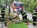 Silný vietor spôsobil problémy v Bratislavskom kraji: Popadané stromy, je vydaná výstraha