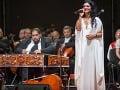 Koncert Cigánskych diablov ohrozila búrka: Všetko lietalo, popadali mikrofóny... Fanúšikovia museli čakať!