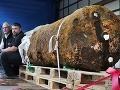 Vo Frankfurte našli bombu: Zatvoria letisko aj diaľnicu