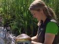 Z jazera vytiahli mimoriadne nechutný organizmus: Hrozí, že sa rozšíri na celý kontinent