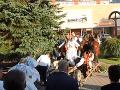 VIDEO Svadobčania sa vybrali Krupinou: Originálny nápad s vozom ťahaným koňmi dopadol bolestne