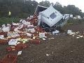 Pri smrteľnej zrážke s kamiónom vyhaslo sedem ľudských životov.
