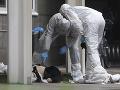 Konvertovala na kresťanstvo, manžel moslim ju zavraždil: Nemecká prokuratúra žiada doživotie