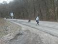 Smutný osud odhodeného psa: FOTO Majiteľka ho vysadila na ceste, bezmocný útulok, najhorší koniec