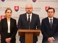 SaS predstaví tieňovú vládu na jesennej programovej konferencii, povedal Sulík