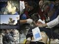 Násilná a krvavá vojna, Sýria v ohni už sedem rokov: Každodenný boj o život, utrpenie nevinných
