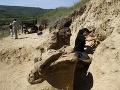 FOTO Muž pri práci na poli náhodou narazil na mimoriadny objav: Monštrum, ktoré chodilo po zemi