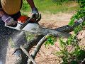 Nešťastie v lese nad obcou Bystrá: Lesníka (†64) zasiahol padajúci strom, nemal šancu prežiť
