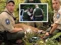 Puma zabila cyklistu neďaleko Seattlu.