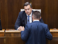 Danko: Koalícia nerokovala o kandidátoch na policajného prezidenta