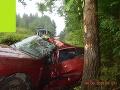 Smrteľná nehoda v okrese Gelnica: FOTO Vodič (†31) dostal šmyk a narazil do stromu, neprežil to