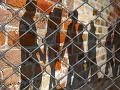 Vzbura v utečeneckom tábore: Migranti protestovali proti životným podmienkam