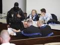 Súd rozhodne o sýkorkách: Podľa nájomného vraha tam chýbajú kajúcnici, hrobári a kanibali