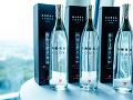 Slovenská vodka v TOP