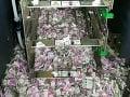 Žalostný pohľad: VIDEO Milión v bankomate skončil na márne kúsky, vinníci vás šokujú!