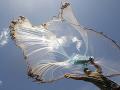 Strašidelná smrť turistu (†23): Stačilo, aby vytiahol z vody rybársku sieť a potom TO prišlo