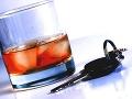 Policajti zadržali opitého vodiča: Neuveríte tomu, čo chcel urobiť jeho opitý spolujazdec