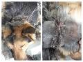 Hrôza z východného Slovenska: FOTO Žena priviazala svojho psa na reťaz, za 10 mesiacov mu vrástla do kože