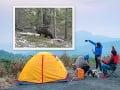 Trojica turistov stretla grizlyho