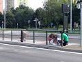 Nebezpečné zastávky v Košiciach: Hromadný úhyn vtákov, FOTO mesto začalo konať