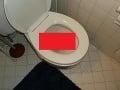 Muž išiel vykonať bežnú potrebu: V záchodovej mise ho privítalo hotové monštrum na FOTO