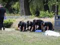 Pohreb Britky, ktorú otrávil novičok, budú sprevádzať mimoriadne opatrenia