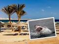 Hrozivý koniec dovolenky Čecha (†41) v Egypte: Zabil ho žralok, útok pred očami manželky
