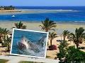 Snímka pláže pri letovisku Calimera Habiba Beach Resort.
