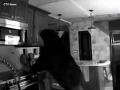 VIDEO Anna (95) pozerala televízor, keď začula hluk v kuchyni: Vlámal sa tam medveď!