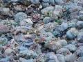 Thajsko bojuje s haldami smetí: Vláda zakáže dovoz elektronického a plastového odpadu