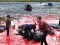 Tisícročná tradícia nahnala turistom husiu kožu: FOTO na vlastné riziko, masívne vyvražďovanie