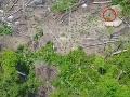 Vedci zverejnili unikátne VIDEO izolovaného amazonského kmeňa: S ľuďmi nechce mať nič spoločné