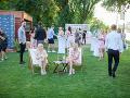 Takto to vyzeralo na garden párty Aleny Pallovej a Gabriely Drobovej.