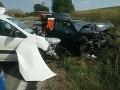 Pri Radošovciach sa čelne zrazili dve autá: Päť zranených, chlapčeka prevážal vrtuľník
