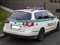 Pre kauzu Gorila sa vedie 10 trestných konaní, informuje polícia: Pre Paroplyn padli obvinenia