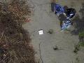 FOTO Mexickí vyšetrovatelia odhalili tajné masové hroby: Našli v nich 166 lebiek