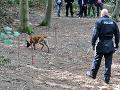 V Hamburgu obnovili 19-ročný prípad strateného dievčatka: VIDEO Teraz hľadajú jej pozostatky