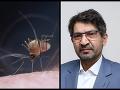 V Európe môže vypuknúť malária: FOTO Na Slovensku sa nedá vylúčiť ani riziko západonílskeho vírusu