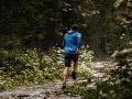 Muž si šiel zabehať do hôr: Zrazu sa otočil a musel bojovať o život, šelmu zabil holými rukami