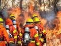 PRÁVE TERAZ Pri Prahe horí les: Ťažko prístupný terén, hasiči zvýšili stupeň poplachu
