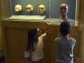 Povstal z popola: Z vyhoreného múzea vytiahli zvyšky najcennejšieho exponátu