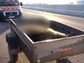 Stret osobného vozidla s medveďom na diaľnici D1.