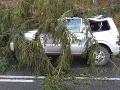 FOTO Silný vietor bičuje Slovensko: Vlak narazil do spadnutého stromu, stred krajiny je bez elektriny