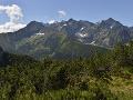 Novým šéfom Štátnych lesov TANAP-u sa má stať developer: Slováci zúria, to je zlý vtip!