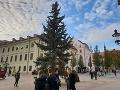 FOTO Bratislava sa ponorila do vianočnej nálady: Na námestí už stojí krásny stromček