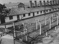 Hrôza holokaustu: Krutý príbeh Slovenky Cilky, z ktorej spravili v Osvienčime sexuálnu otrokyňu